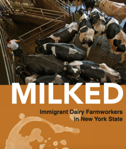 MILKED cover photo(2)